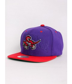 Mitchell & Ness Raptors